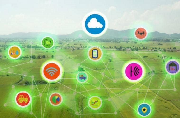 Sensores del Internet de las Cosas (IoT)